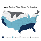 Worst US States For Termites Feature Groundworks